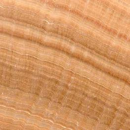 Wood Yellow, Hiina